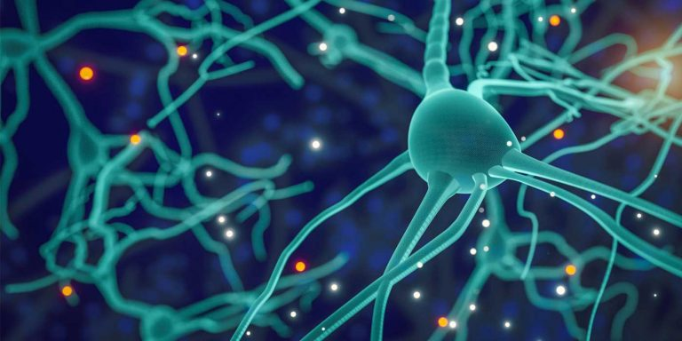 Apa itu neuron