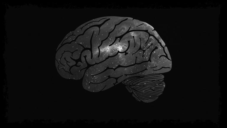 Cara Kerja Otak